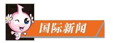 新闻夜读_国际新闻.png