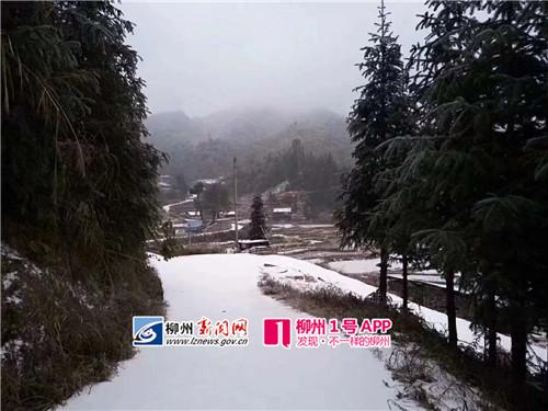 4℃),同练乡(-4.5℃),安太乡小桑村(-4.5℃),红水乡黄乃村(-4.
